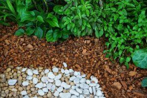 Ściółkowanie gleby pomaga utrzymać wodę w glebie
