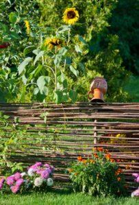 Faszynowy płotek w ogrodzie
