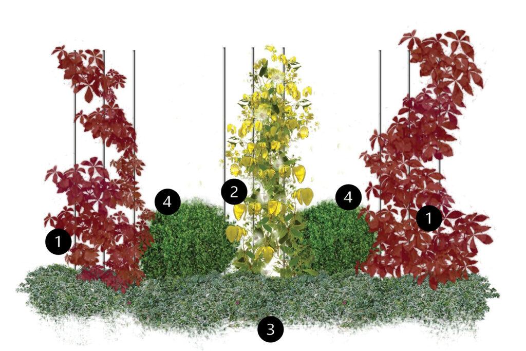 Roślinne obeliski - projekt na pionowych podporach