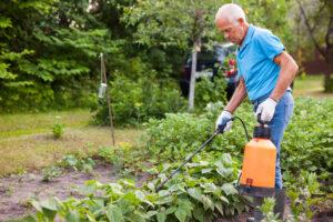 Pestycydy - Stosowanie chemicznych zabiegów ochrony wymaga użycia odzieży ochronnej
