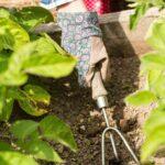 Wzruszanie gleby